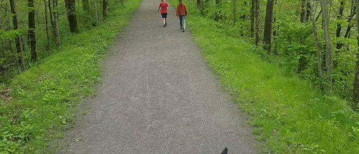 Horseback rider following two kids