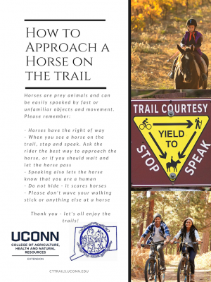 trail courtesy flyer and how to approach a horse on the trail